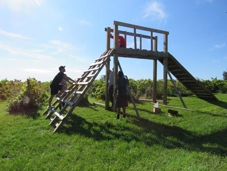 Three Skyline staff build a wooden obstacle